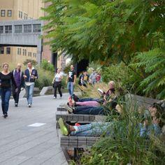 L'attractivité de la nature en ville
