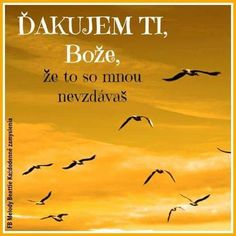 ale je to někdy dřina Motto, Quotations, Dreaming Of You, Faith, Christian, Adventure, Humor, Motivation, Words