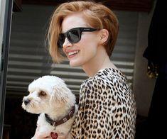 jessica chastain hair sunlasses dog leopard