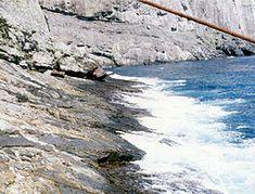 Isla de Malpelo -
