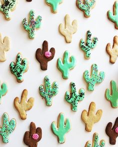 cactus cookies! sugar cookies with green royal icing and sprinkles to make them look like desert cactus