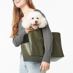 Handmade Leather Dog Gear from Fable - Dog Milk Cute Dog Clothes, Dog Milk, Pet Carriers, Cat Design, Classic Leather, Pet Accessories, Chihuahua, Dog Cat, Stylish