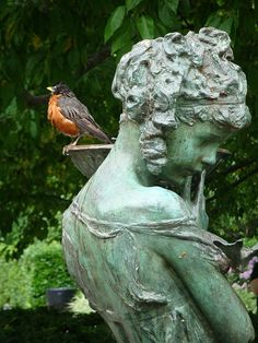 Garden statue and robin