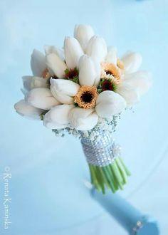 Biale tulipany