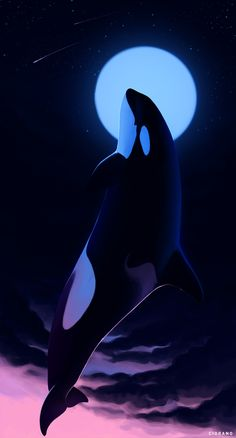 """cioranius: """" Rest in Peace, Granny If you keep an eye on news on cetaceans, more likely you already know this. Center for Whale Research announced that an icon of Souther Resident orcas community -. Underwater Animals, Underwater Art, Orcas, Caballo Spirit, Orca Art, Wild Animals Photography, Black Panther Art, Beautiful Dark Art, Killer Whales"""