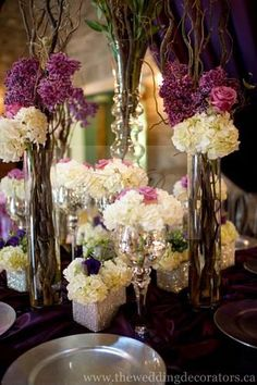 tall twigs with bunches of flowers