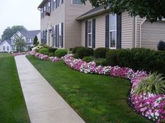 Plants For Landscaping Front Yard #landscapingfrontyard