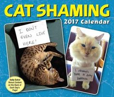 Featuring funny and contributed photos from the popular Tumblr blog, the new Cat Shaming 2017 Day-to-Day Calendar is perfect for those who know that good kitties sometimes do bad things...and love the