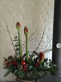 New Photo Blumen arrangement - Blumen Natur Ideen Ideas Among probably the most lovely and sophisticated types of flowers, we cautiously selected the corres Christmas Flower Arrangements, Christmas Flowers, Christmas Centerpieces, Christmas Home, Floral Arrangements, Christmas Holidays, Christmas Decorations, Xmas, Holiday Decor