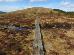 Spinc Hike