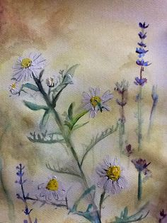 Chamomile and Lavender painting Watercolor Painting Techniques, Painting Lessons, Watercolor Paintings, Oil Paintings, Lavender Paint, Learn To Paint, Flower Photos, Lilac, Purple