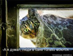 Sergey Maksimov – Google+