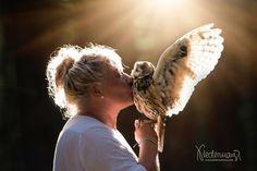 Owl, Bird, Animals, Photo Shoot, Animales, Animaux, Owls, Birds, Animal