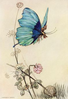 "Warwick Goble, from ""The fairy book 1913"""