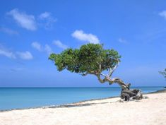 pictures of punta cana | Punta Cana (Photo, Pics, Travel Info) | Dominican Republic