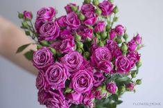 purple spray roses, purple bouquet, flower moxie Diy Wedding Flowers, Spray Roses, Purple, Magenta, Floral Wreath, Bouquet, Harvest, Paradise, Beautiful