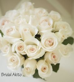 Bridal Akito Blush pink rose - in the past I bought these and they looked white - almost no noticeable blush at all...