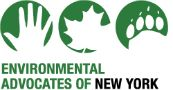 Tell Governor Cuomo to make New York a leader in climate action!