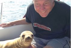 This Sea Lion Jumped Inside A Boat — and What He Did to The Passenger Will AMAZE You! (VIDEO)