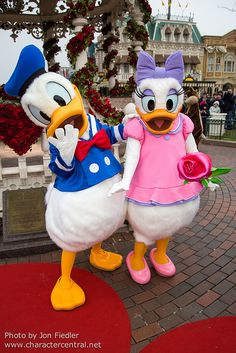 DLP Feb 2013 - Donald & Daisy Duck