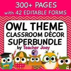 Owl Theme  Do you love owls? I do! They are sooooo adorable!  This fantastic bundle will look amazing in your classroom!  Please see the preview to have a peek of this bundle!