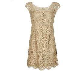 Dolce & Gabbana Beige Lace Dress (1 970 AUD) ❤ liked on Polyvore featuring dresses, vestidos, short dresses, robes, lace camisole, brown dress, short lace dress and short lace cocktail dress