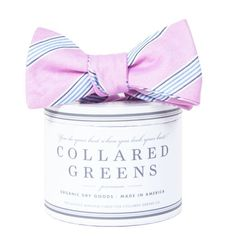 Collared Greens Catalina Bow Tie in Pink