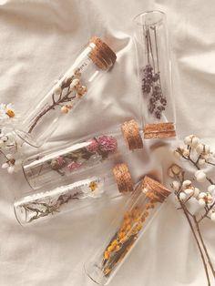Tada_r.works fles met gedroogde bloemen - Apocalypse Now And Then Nature Aesthetic, Beige Aesthetic, Flower Aesthetic, Aesthetic Rooms, Aesthetic Vintage, Aesthetic Drawing, Spring Aesthetic, Aesthetic Women, Aesthetic Outfit