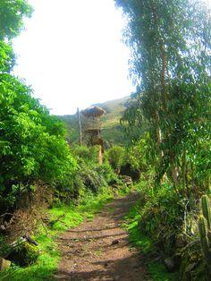 Huayllafara, Sacred Valley - Peru