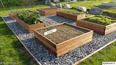Veg Garden, Vegetable Garden Design, Terrace Garden, Garden Boxes, Home And Garden, Outdoor Greenhouse, Outdoor Gardens, Backyard Projects, Growing Vegetables