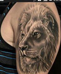 leao   Tatuagem.com (tatuagens, tattoo)
