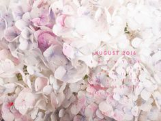 ... 2016 Calendar on Pinterest | 2015 calendar, Muse and 2016 calendar