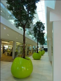 This is the winner of 'Cool Uses of Plants in the Workplace 2013'. It was chosen as it had the most re-pins and most likes. Watch this space for next year's competition.  This is one of the cool workplaces we have added some plants to. Do you like?