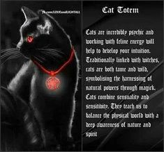 Black cats as power totem animals. Cat Spirit Animal, Animal Spirit Guides, Power Animal, Wicca Witchcraft, Animal Totems, Book Of Shadows, Cat Art, Witches, Black Cats
