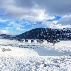 Today on The Ranch at Rock Creek's Instagram, New Beauty Magazine managing editor Liz Ritter takes over, showing her perspective of travel, wellness and beauty in the wilds of Montana.