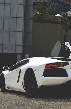 Lamborghini ☆ EXOTIC WHIPS ☆