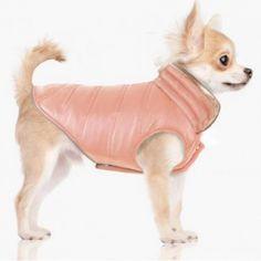 Manteau Réversible Cara Cruz Taupe/Pink Milk and Pepper Matisse Dog, Milk And Pepper, Pink Milk, Gadget, Chihuahua, Stuffed Peppers, Dogs, Pets, Gatos
