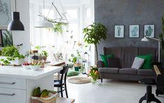 Margo remplit de plantes vertes son intérieur décloisonné blanc, pour fractionner l'espace