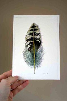Northern Flicker Woodpecker Feather  Original by jodyvanB on Etsy
