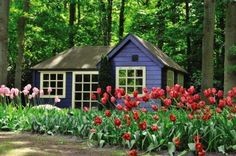 Ogrody Keukenhof Shed, Outdoor Structures, Cabin, House Styles, Home Decor, Decoration Home, Room Decor, Cabins, Cottage