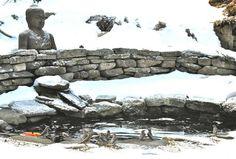fish pond retaining wall
