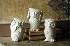 Image result for owls accessories