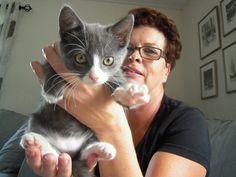 Hej. Det är jag som är katten Gösta. | Flickr - Photo Sharing!