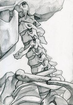 workman's tumblr - anatoref: Skeleton Studies by James Julier