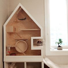 This homemade wooden chinchilla cage is pretty sweet. I love how it's shaped like a human house and the chinchilla has a closed off section to stand in. Hamsters, Chinchillas, Pet Rats, Gerbil, Rodents, Hedgehog Habitat, Hedgehog Cage, Hedgehog House, Hamster House