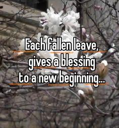 The blessing spells