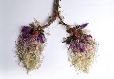 Eye Heart Spleen: Human Organs Made from Plants by Camila Carlow: eye-1.jpg
