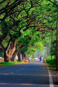 Fort Kochi by Ershad Ashraf on road Desktop Background Pictures, Studio Background Images, Light Background Images, Photo Backgrounds, Background Images For Editing, Blur Background Photography, Blur Photo Background, Picsart Background, Hd Background Download