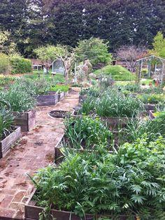 Smart Organic Horticulture Ideas For A Healthier Garden!