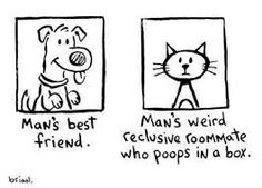 Cat VS Dog Cartoon: Man's Best Friend vs Man's Weird Reclusive Roommate Who Poops In A Box!